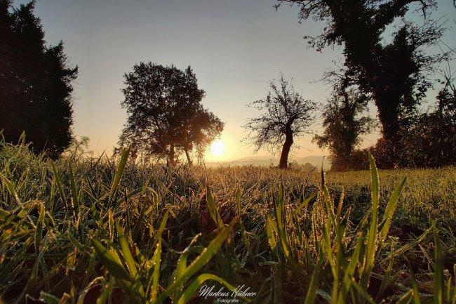 09.11.2020: Herbstmorgen.